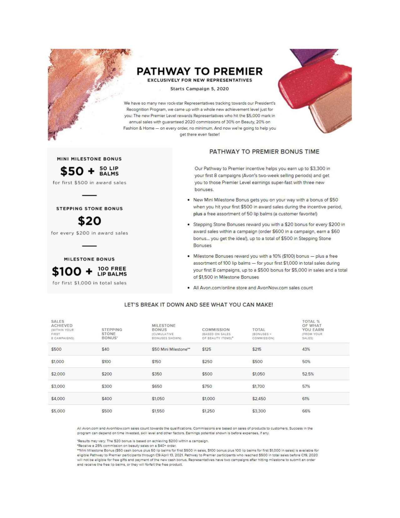 2021 Pathway to Premier Incentive-1